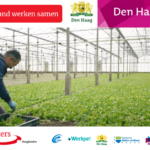 Den Haag Werkt