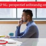 Enquête ZZP NL